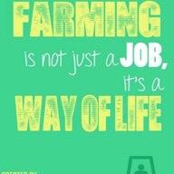 Farming-memes-300549863378501-924